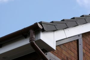 ideal roofline